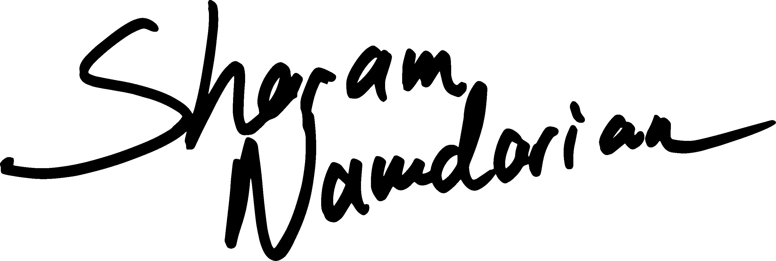 Sharam Namdarian Signature Logo
